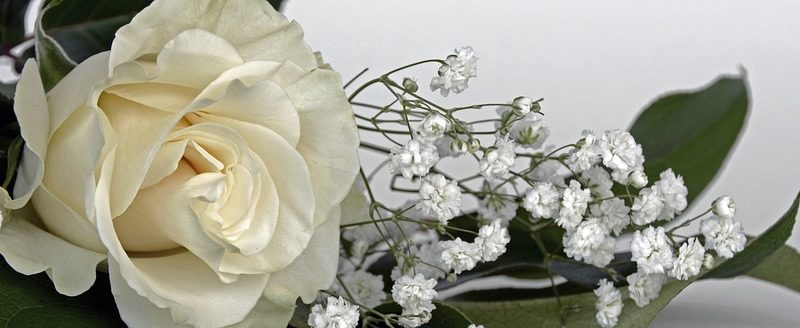 Le 5 migliori frasi per i 25 anni di matrimonio for Immagini auguri 25 anni matrimonio
